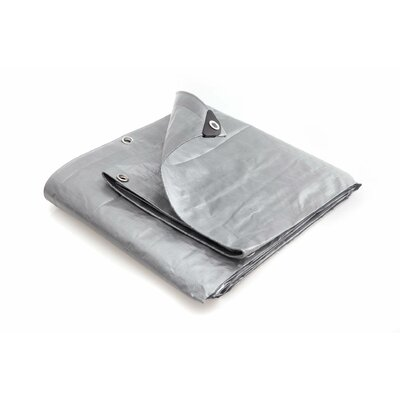 12 Ft. W x 25 Ft. D Tarp Color: Silver / White