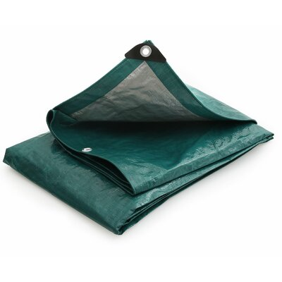 6 Ft. W x 8 Ft. D Tarp Color: Green / Silver