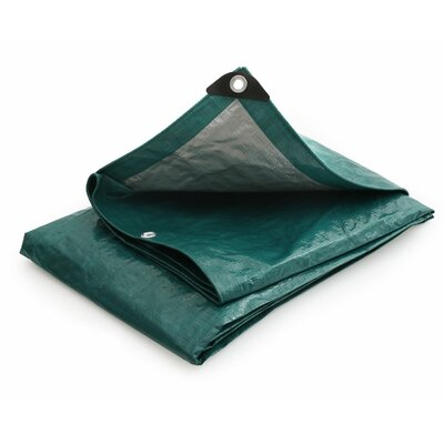 15 Ft. W x 30 Ft. D Tarp Color: Green / Silver
