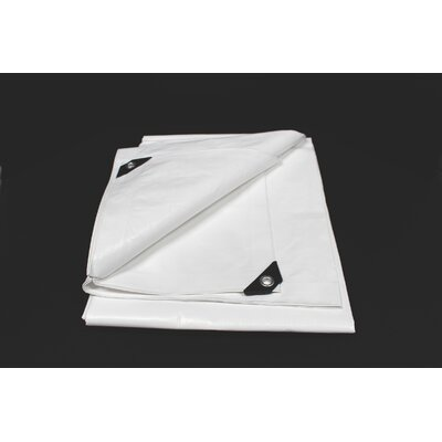 Image of 10 Ft. W x 10 Ft. D Tarp Color: White