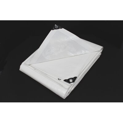 8 Ft. W x 10 Ft. D Tarp Color: White