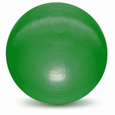 Burst Resistant Ball Size: 65cm