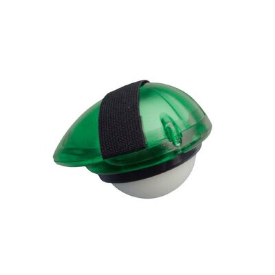 Orbit Massagere Color: Green