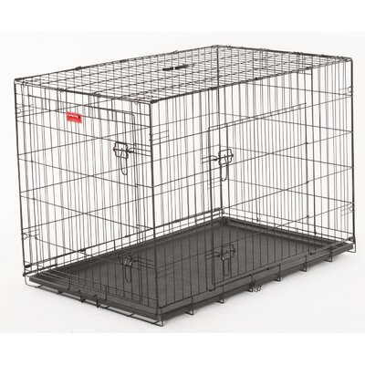 Lucky Dog 2 Door Training Crate Size: 31 H x 28 W x 42 D