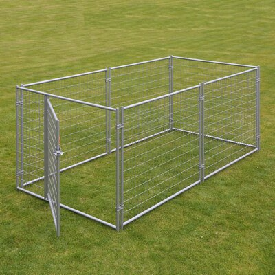 Alina? Welded Wire Yard Kennel Size: 4 H x 5 W x 10 L