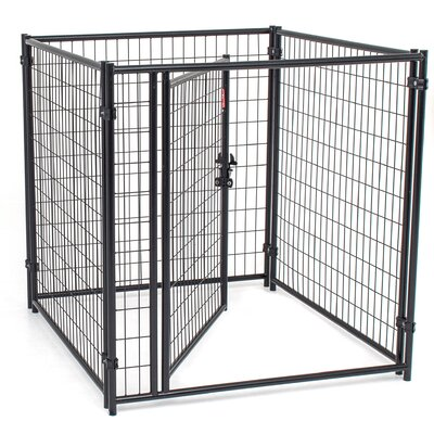 Lucky Dog� Modular Welded Wire Kennel Kit Size: 4 H x 4 W x 4 L
