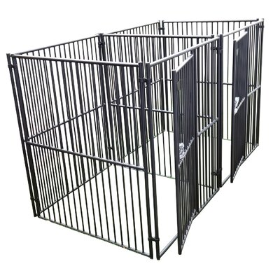 European Style 2 Run Wide Yard Kennel Size: 6 H x 5 W x 5 L