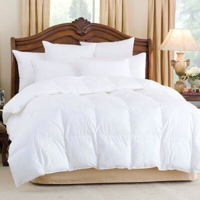 Andesia 650 Summer Lightweight Goose Down Comforter Size: Queen