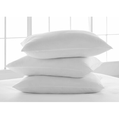 Breathe Clean and Clear Polyfill Pillow Size: King