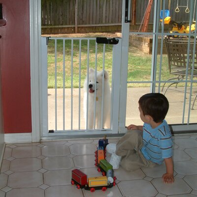 Cardinal Gates Lock-n-Block Sliding Door Gate at Sears.com