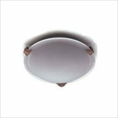 Valencia 12  Flush Mount Finish / Size / Bulb Type: Black / 4 H x 16 W / J118mm