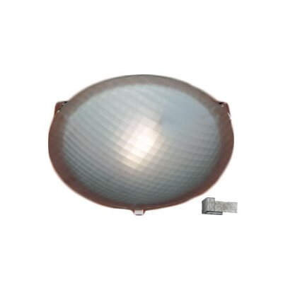 Nuova 1-Light Flush Mount Finish / Size / Bulb Type: Iron / 3.5 H x 12 W / J118mm