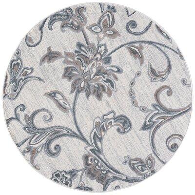 Majoros Floral Cream Area Rug Rug Size: Round 710
