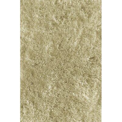 Soft Shaggy Off Brown Indoor Area Rug