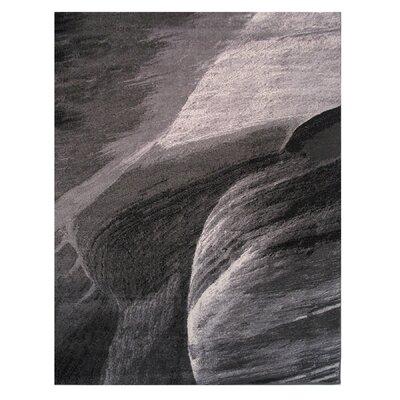 Gray Area Rug Rug Size: 2 x 4
