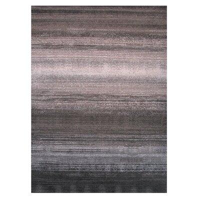 Gray/Brown Area Rug Rug Size: 2 x 4