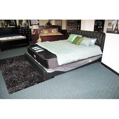 Super Shag Black Rug Rug Size: 8 x 10