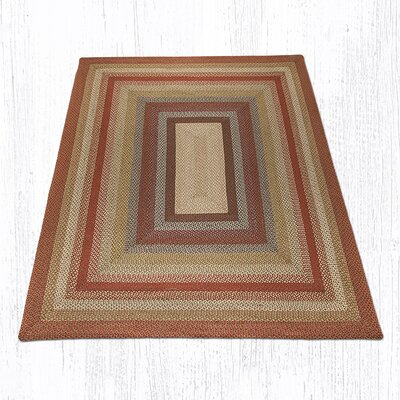 Braided Red / Brown Area Rug Rug Size: Rectangle 8 x 10