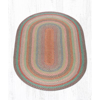 Multi 1 Braided Area Rug Rug Size: Oval 5 x 8