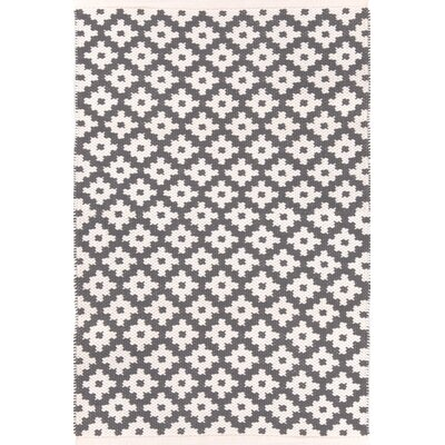 Samode Hand Woven Grey Indoor/Outdoor Area Rug Rug Size: Rectangle 6 x 9