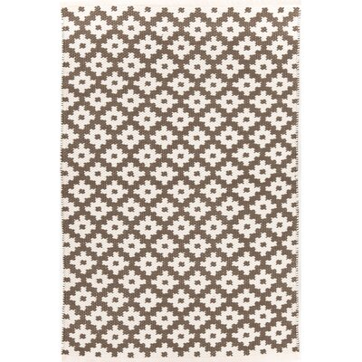 Samode Hand Woven Grey Indoor/Outdoor Area Rug Rug Size: 6' x 9'