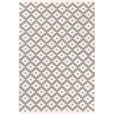 Samode Hand Woven Beige Indoor/Outdoor Area Rug Rug Size: Rectangle 4 x 6