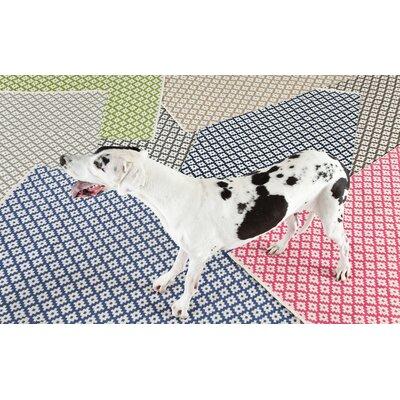 Samode Hand Woven Pink Indoor/Outdoor Area Rug Rug Size: Runner 26 x 8