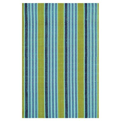 Hand Woven Blue Indoor/Outdoor Area Rug Rug Size: 2 x 3