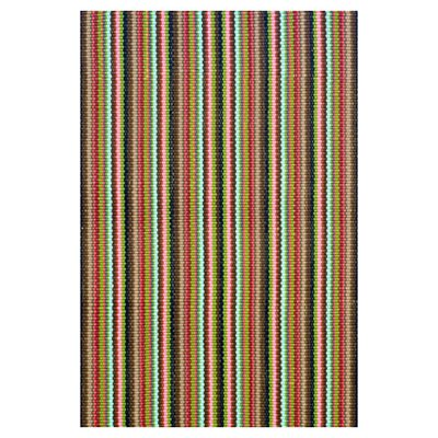 Hand Woven Indoor/Outdoor Area Rug Rug Size: 6 x 9
