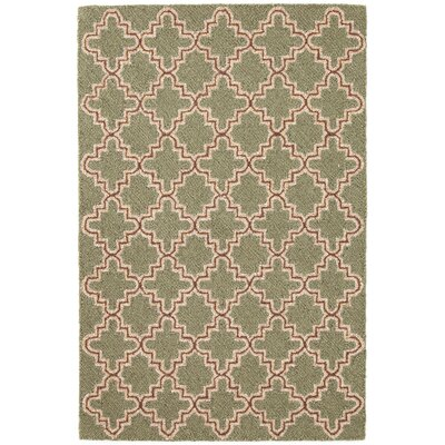 Plain Tin Hooked Green Area Rug Rug Size: 2 x 3