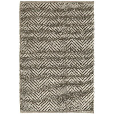 Nevis Hand Woven Grey Area Rug Rug Size: Rectangle 10 x 14