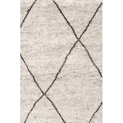 Hand-Knotted Gray Area Rug Rug Size: Rectangle 10 x 14