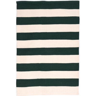 Catamaran Hand Woven Green/White Indoor/Outdoor Area Rug Rug Size: 6 x 9