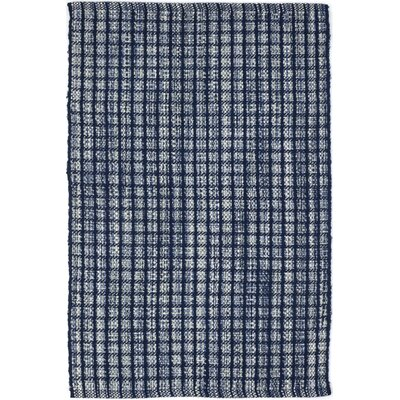 Hand-Woven Blue Indoor/Outdoor Area Rug