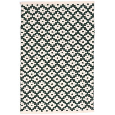 Samode Hand Woven Green/White Indoor/Outdoor Area Rug