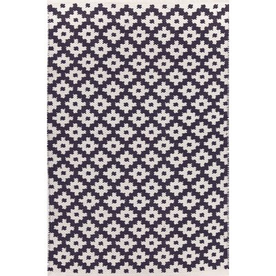 Samode Hand Woven Blue/White Indoor/Outdoor Area Rug Rug Size: 6 x 9