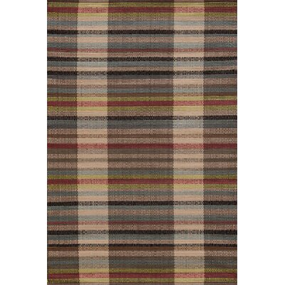 Hand-Woven Indoor/Outdoor Area Rug