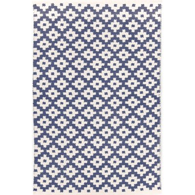 Samode Hand-Woven Blue/White Indoor/Outdoor Area Rug