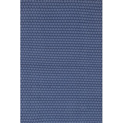 Rope Hand-Woven Blue Indoor/Outdoor Area Rug