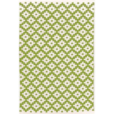 Samode Hand-Woven Green/White Indoor/Outdoor Area Rug