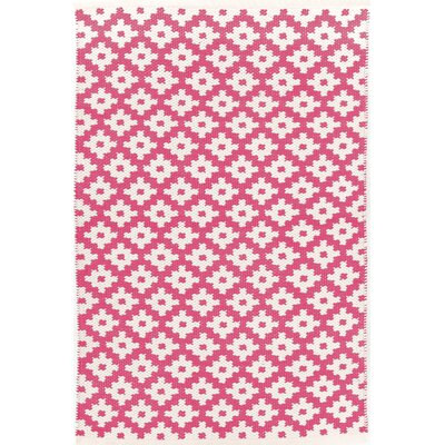 Samode Hand-Woven Pink/White Indoor/Outdoor Area Rug