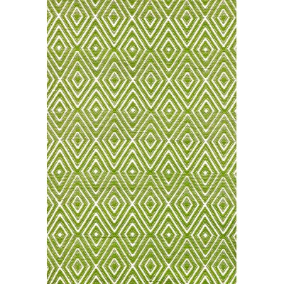 Diamond Hand Woven Green Indoor/Outdoor Area Rug