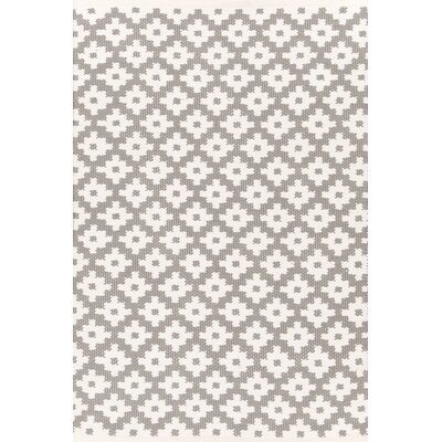 Samode Hand-Woven Gray/White Indoor/Outdoor Area Rug