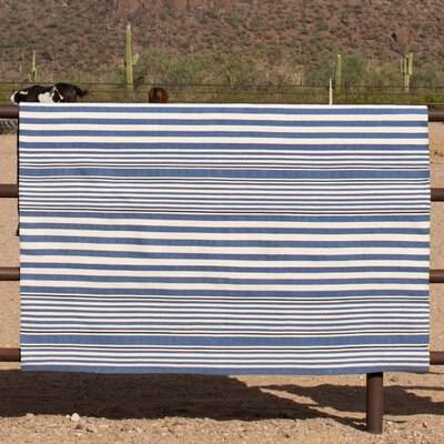 Indoor/Outdoor Blue/White Outdoor Area Rug Rug Size: 2 x 3
