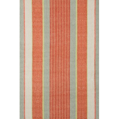 Hand Woven Orange Area Rug Rug Size: Rectangle 4 x 6