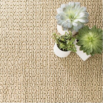 Veranda Natural Indoor/Outdoor Area Rug Rug Size: 25 x 8