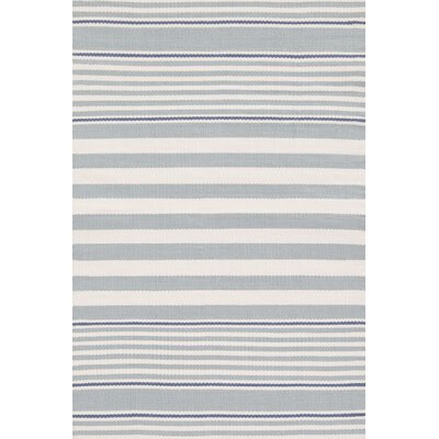 Indoor/Outdoor Blue/White Outdoor Area Rug Rug Size: Rectangle 6' x 9'