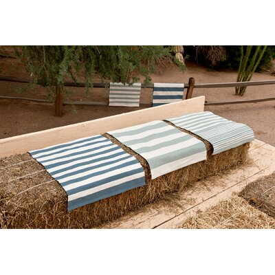 Hand-Woven Blue/White Indoor/Outdoor Area Rug Rug Size: Runner 26 x 8
