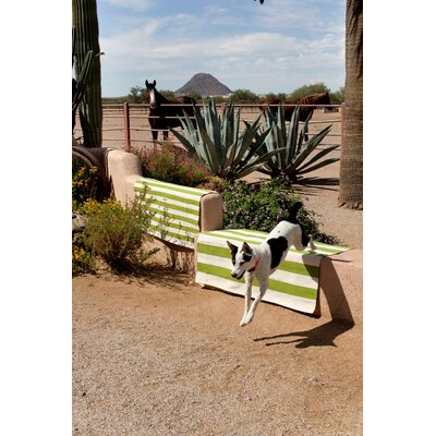 Catamaran Green/White Outdoor Area Rug Rug Size: Runner 26 x 8
