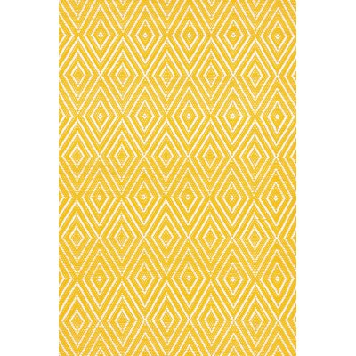 Indoor/Outdoor Yello Area Rug Rug Size: Runner 26 x 8